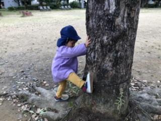 自然公園遊びbyECOEDU